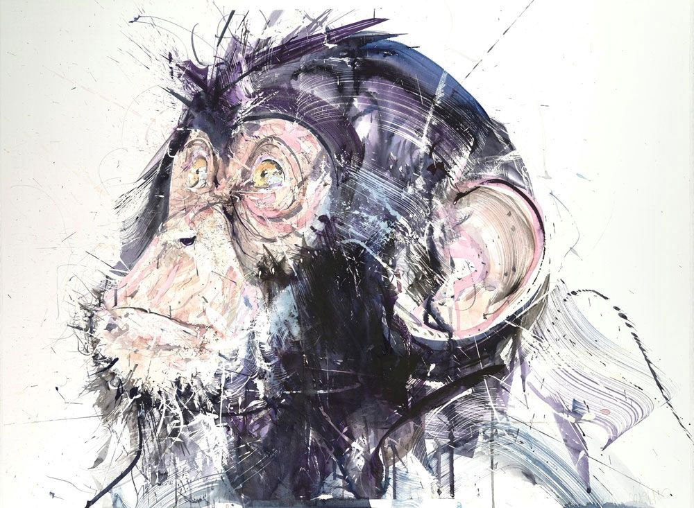 Chimp III by Dave White