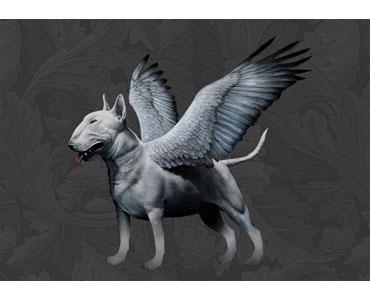 Pegasus Terrier by Dylan Floyd